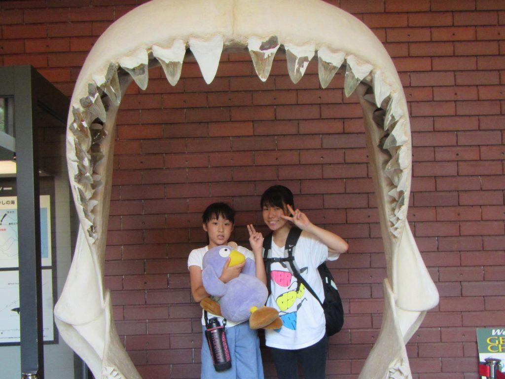 夏合宿 自然の博物館
